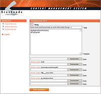Crashendo aus Bochum im komplett neuen Gewand! Webdesign-Spezialist Designbetrieb launcht www.crashendo.de